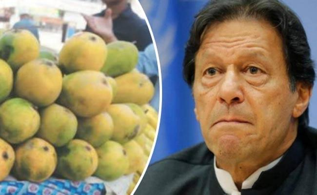 Pakistan Mango Diplomacy Rejected By 32 Countries - Sakshi