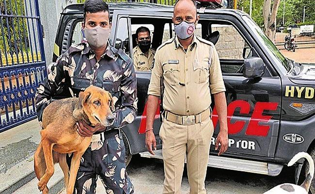 Banjarahills Police Constables Do X Ray For Street Dog - Sakshi