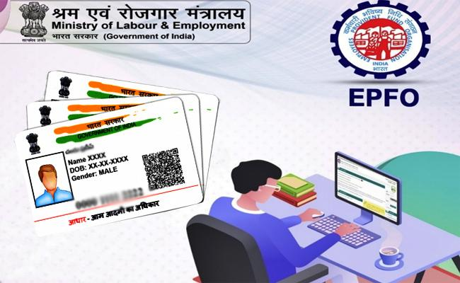 How To Link Your Provident Fund UAN Number with Aadhaar - Sakshi