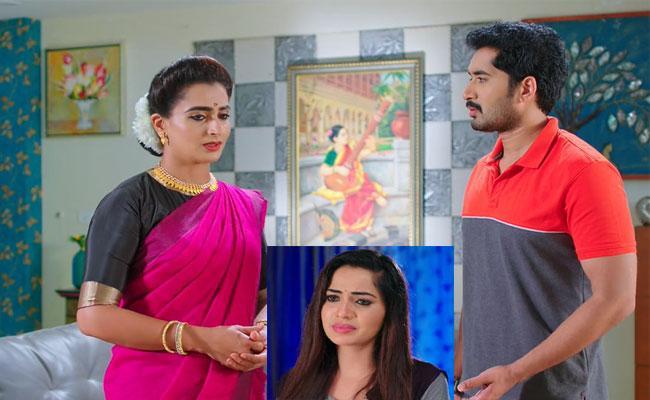 Karthika Deepam Serial: Karthik Seeks Soundarya Help Over Monitha - Sakshi