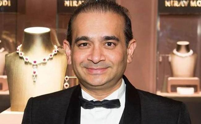 UK High Court rejects Nirav Modi extradition plea - Sakshi