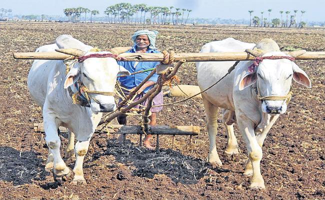 YSR Rythu Bharosa assistance before the season - Sakshi
