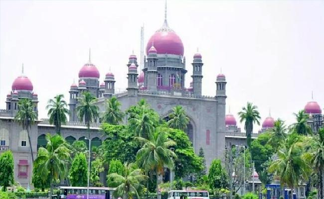 TS HC Orders Govt Take Care About 177 Orphan Childs Due To Covid - Sakshi