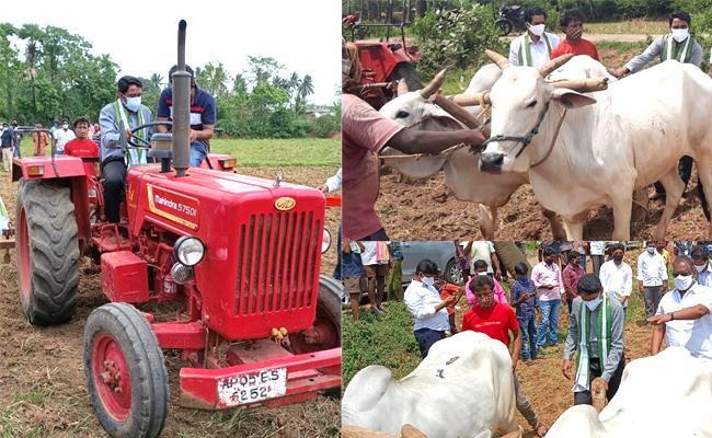 Joint Collector Laxmisha Plowed The farming Land In East Godavari - Sakshi