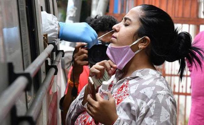 Hyderabad Telangana New Corona Virus Cases Recorded - Sakshi