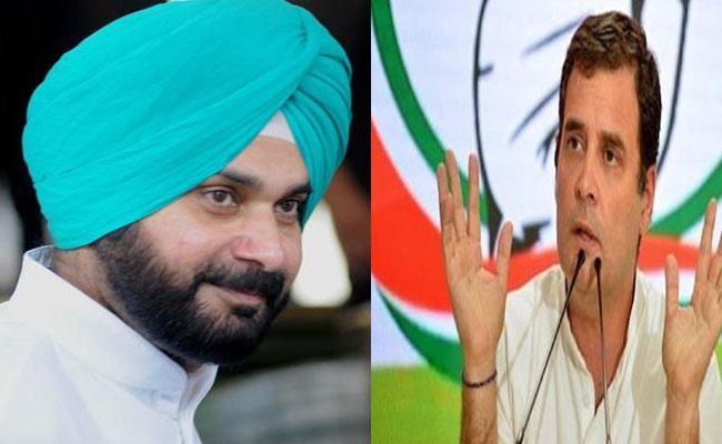 Rahul Gandhi Says No Meeting Scheduled With Navjot Singh Sidhu - Sakshi