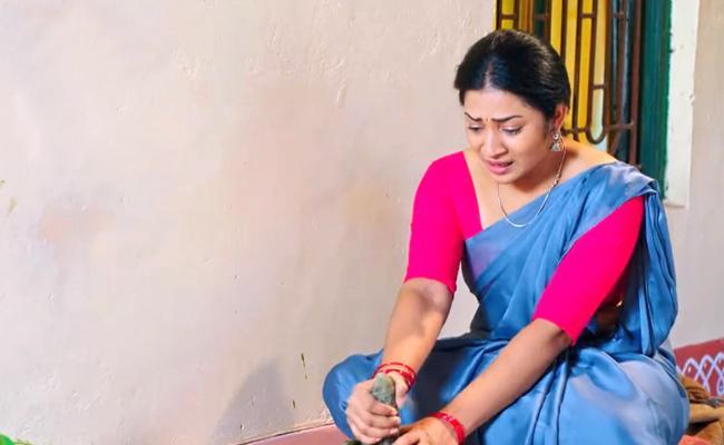 Devatha Serial : Basha Condemns Kamalas Arrogant bBehaviour - Sakshi
