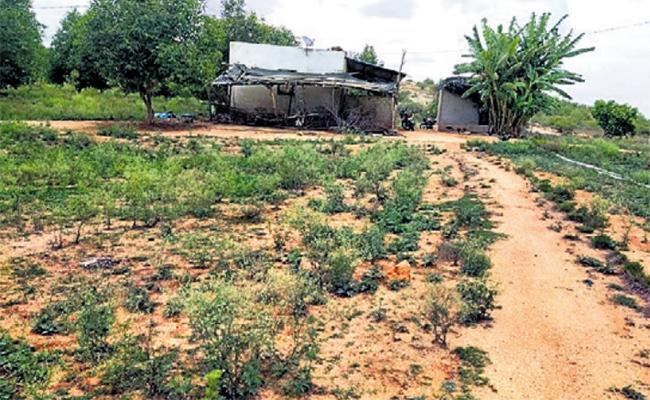 TDP Leader Land Grab In Chittoor District - Sakshi