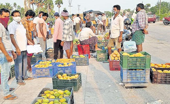 Mogalturu Mangos: Coronavirus Second Wave Hit Mango Exports - Sakshi