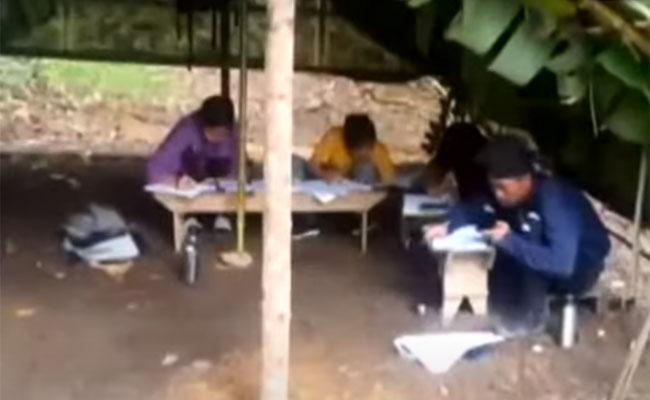 Mizoram Students Climb Hill To Catch Signal For Online Test Video Viral - Sakshi