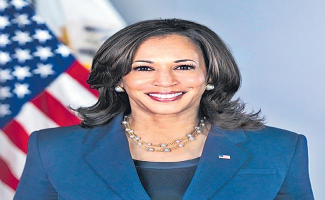 A Book On The Rise Of Indian Americans Inspired By Kamala Harris - Sakshi