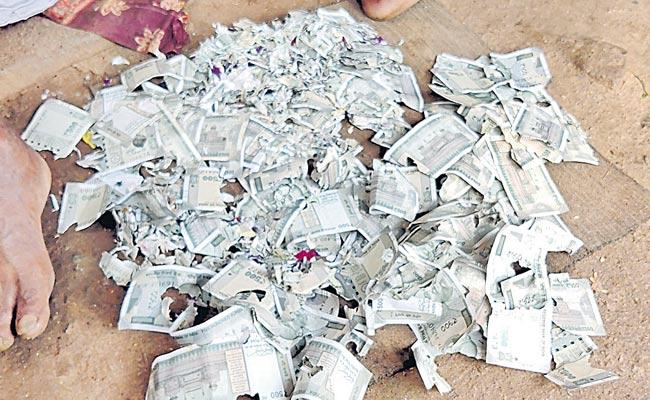 Rats Who Ate Two Lakh Currency Notes In Mahabubabad - Sakshi