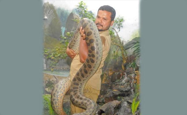 Reptile  Keeper Deceased of King Cobra Bite In Thiruvananthapuram zoo - Sakshi