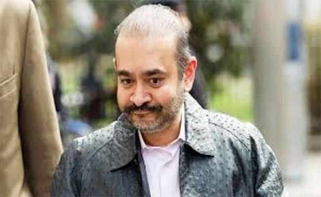 Nirav Modi Says Extradition To India Would Worsen Suicidal Feelings - Sakshi