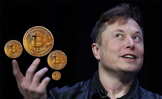Tesla Ceo Elon Musk  Restart Accepting Bitcoin As Payments - Sakshi