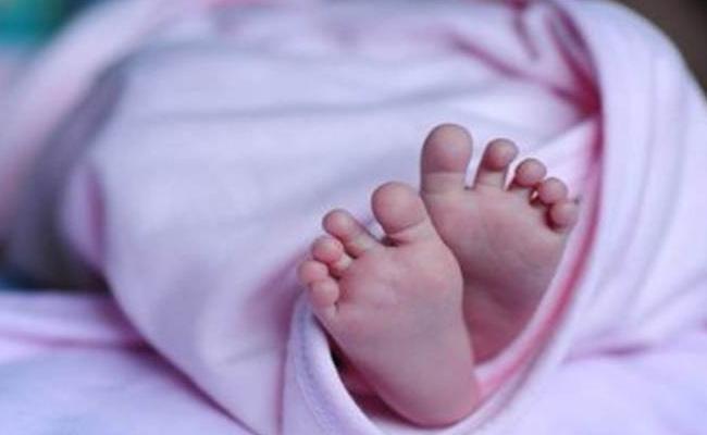 Born Baby Found On Road Side Dustbin In Narasannapeta Srikakulam - Sakshi
