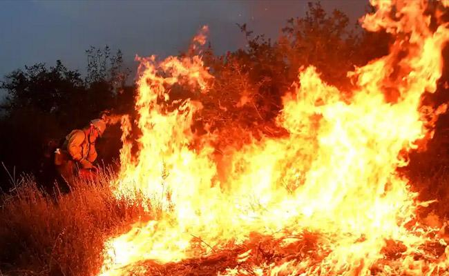 California Couple Gender Reveal Party Sparked A Wildfire Charged with 30 Crimes - Sakshi