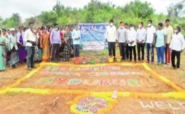 Jagananna Pacha Thoranam Programme Start In Kadapa District - Sakshi