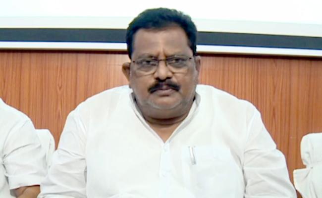 Minister Sri Ranganatha Raju Fires On Chandrababu - Sakshi