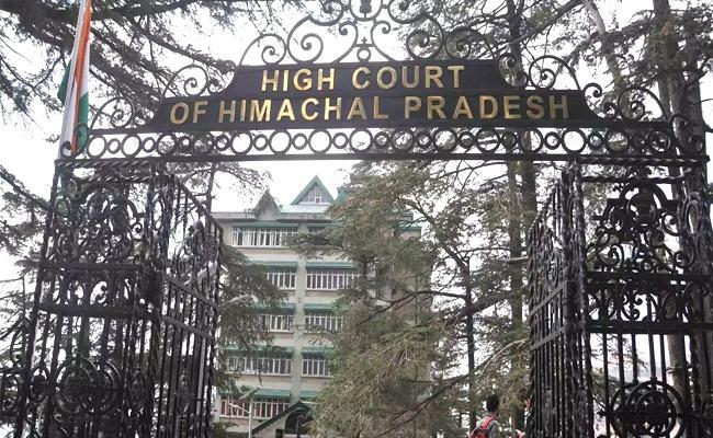 High Court of Himachal Pradesh Said Pregnant Woman Needs Bail Not Jail - Sakshi