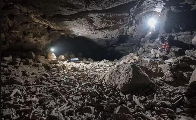 Hyenas Dinner Spot Of Lava Cave Found - Sakshi