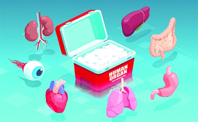 Organ Donation: A Deceased Person Can Save 8 Members Life - Sakshi