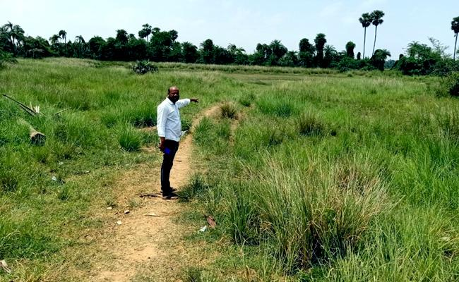 Land Occupy Charges Tdp Leader In Srikakulam - Sakshi