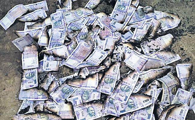 Fire Accident: Farmer Loses Rs 1 Lakh Ktdoddi Gadwal - Sakshi