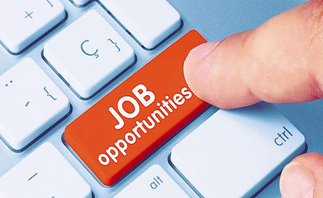 Job opportunities Andhra Pradesh Government Digital Employment - Sakshi