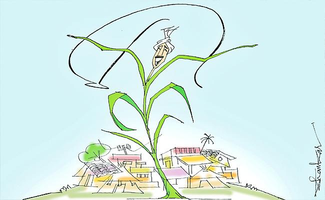 Vardhelli Murali Article On Rural Economy Andhra Pradesh - Sakshi