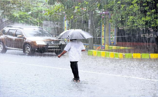 Abundant Rainfall in Andhra Pradesh during months of June and July - Sakshi