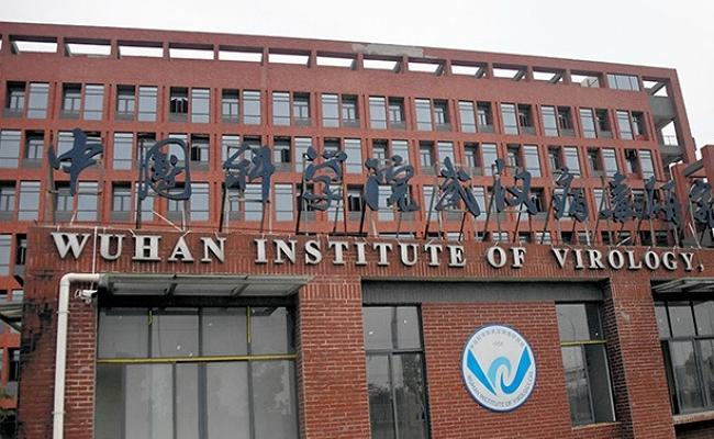 Usa: Republican Report Says Coronavirus Leaked From China Wuhan Lab - Sakshi