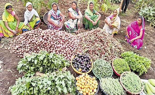 Womens Cultivated Vegetables In Barren Land During Corona - Sakshi