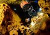 World's Largest Underwater Cave Discovered - Sakshi
