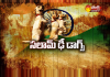 Special Edition    Salam The Dog - Sakshi