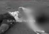 Road accident in bhimavaram - Sakshi