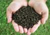 Fertilizer Price Hike In Telangana State - Sakshi