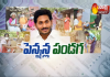 Pension Distribution Begins In AP
