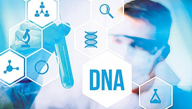 special story on human DNA - Sakshi